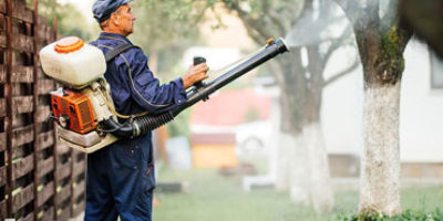 Backpack Sprayers Featured Image
