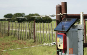 Electric Fence Charger Reviews