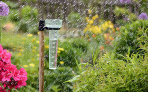 Rain Gauge Featured Image