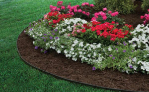 lawn edging featured image